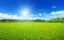 怀玉:气脉太极养生棒创造奇迹,相信相信的力量